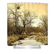 Desert Trail Shower Curtain