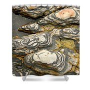 Detail Of Eroded Rocks Swirled Shower Curtain