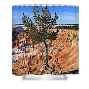 Determined Tree Shower Curtain