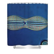 Diatom - Diploneis Crabro Shower Curtain