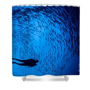 Diver And A Large School Of Bigeye Shower Curtain
