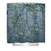 Dogwood Blossoms In A Foggy Forest Shower Curtain
