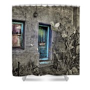 Doorway Shower Curtain