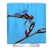Dragonfly Art Shower Curtain