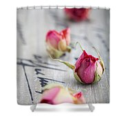Dried Roses Shower Curtain