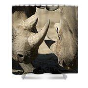 Eastern Black Rhinoceros Shower Curtain