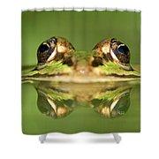 Edible Frog Rana Esculenta Shower Curtain