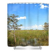 Everglades Landscape Shower Curtain