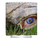 Eye Of A Dinosaur Lightning Shower Curtain