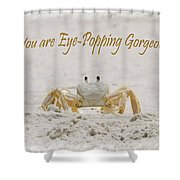 Eye Popping Gorgeous Shower Curtain