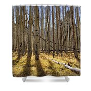 Fall On The Mountain  Shower Curtain