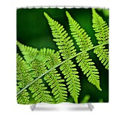 Fern Seed Shower Curtain