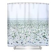 Field In Winter Shower Curtain