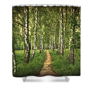 Find Your Way Back Home Shower Curtain