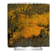 Fine Art Of Nature Shower Curtain