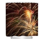 Fireworks In Night Sky Shower Curtain