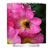 Floral 0017 Shower Curtain