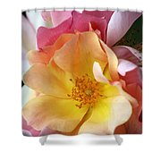 Floral 20 Shower Curtain