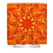 Floral Sunrise Shower Curtain