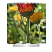 Floral Torch Shower Curtain