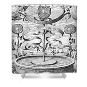 Flower Clock, 1643 Shower Curtain