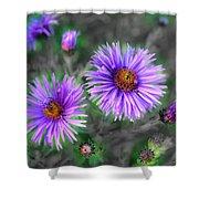 Flower Patterns Shower Curtain