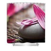 Flower Petals Shower Curtain