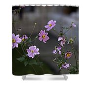 Flowers At The Cloisters Shower Curtain
