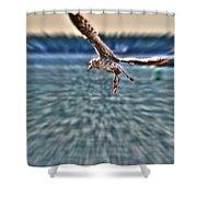 Focused  Shower Curtain