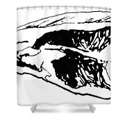 Food: Beef Shower Curtain