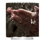 Fresh Splash  Shower Curtain