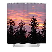Frosted Morning Silhouette Shower Curtain