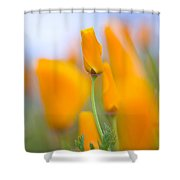 Furled Poppy Shower Curtain