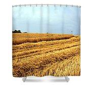Golden Harvest Field 1 Shower Curtain