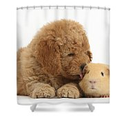 Goldendoodle Puppy And Guinea Pig Shower Curtain