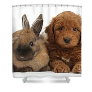 Goldendoodle Puppy And Rabbit Shower Curtain