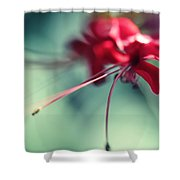 Grace. Natural Watercolor. Touch Of Japanese Style Shower Curtain