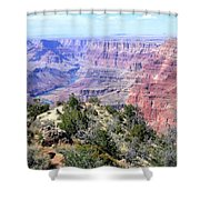 Grand Canyon 8 Shower Curtain