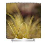 Grass Abstract 2 Shower Curtain
