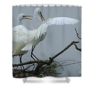 Great Egret Pair Shower Curtain