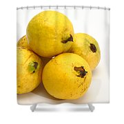 Guava Fruits Shower Curtain