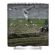 Gull Chased Tractor Shower Curtain