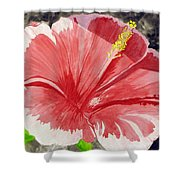 Happy Hibiscus Shower Curtain