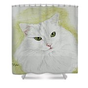 Henri Shower Curtain