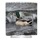 Here It Comes Shower Curtain
