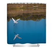 Herron 5 Shower Curtain