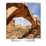 Hickman Bridge Shower Curtain
