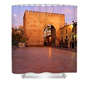 Historic Door In Granada Elvira Arch Shower Curtain