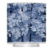 Hoarfrost On Trees In Winter, Birds Shower Curtain