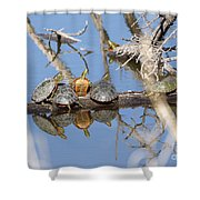 Hog Pile Shower Curtain